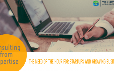 Consulting from Expertise : Need of the hour for Startups and Growing Businesses